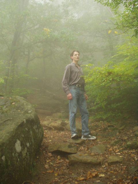 """фото """"В тумане"""" метки: пейзаж, природа, лес"""