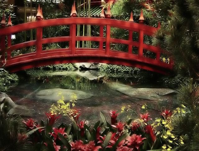 "фото ""The Conservatory"" метки: путешествия, природа, Северная Америка"