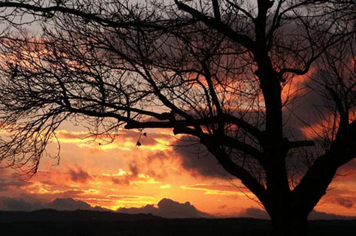"фото ""autumntime"" метки: пейзаж, закат"