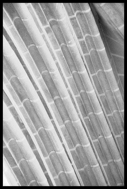 """фото """"lines"""" метки: архитектура, абстракция, пейзаж,"""