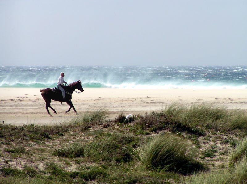 """фото """"Cabalgando el viento.   (Ride the wind)"""" метки: разное,"""