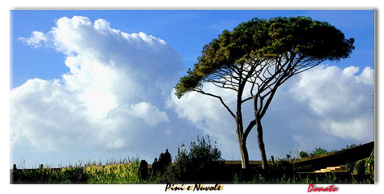 """фото """"Pini e nuvole"""" метки: природа, пейзаж,"""