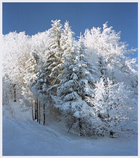 "фото ""просто зима"" метки: природа, путешествия, Европа"