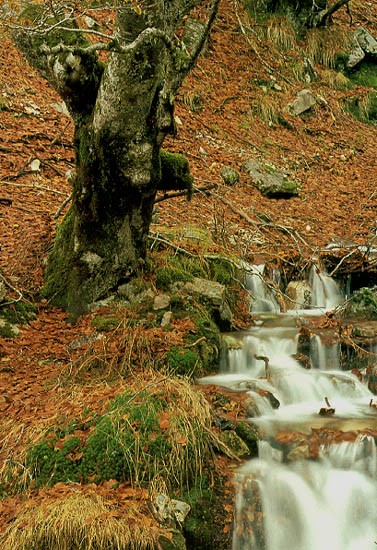 "фото ""In a way to Andorra"" метки: разное,"