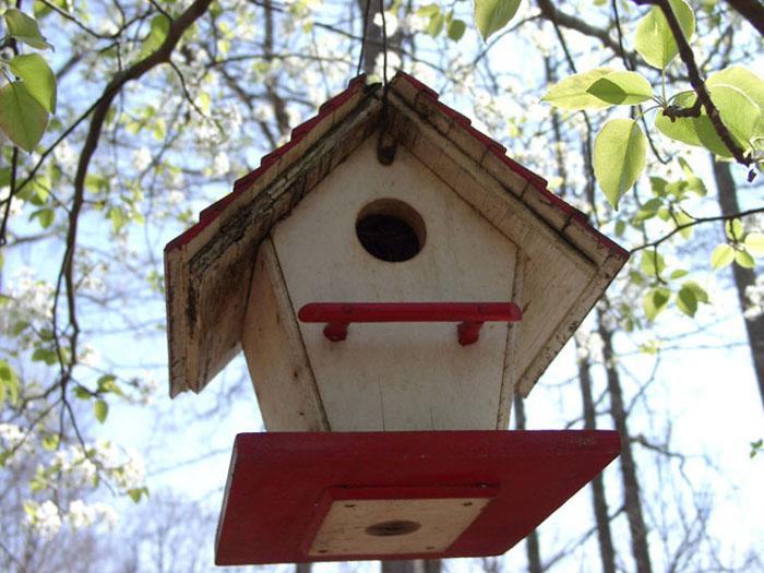 """фото """"For Rent"""" метки: пейзаж, юмор, весна"""