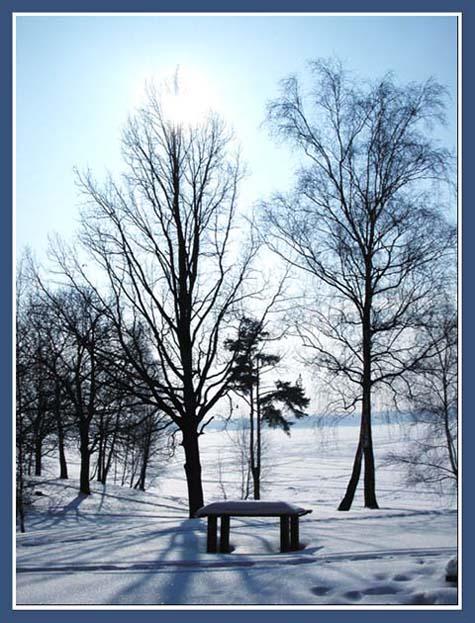 "фото ""Весна идёт"" метки: пейзаж, природа, лес"