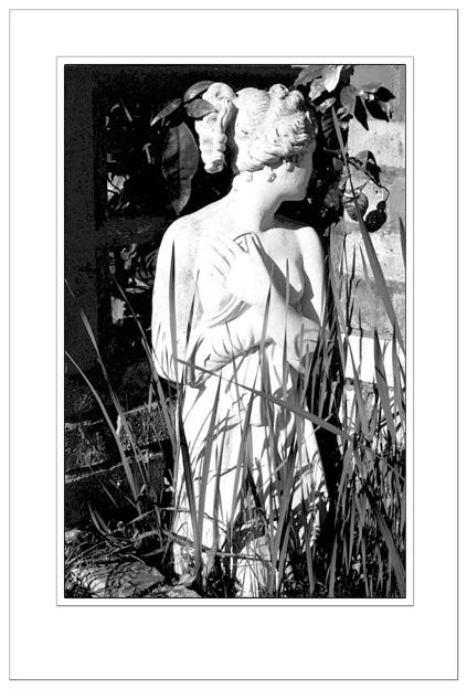 "фото ""Shy Diana"" метки: ню, черно-белые,"