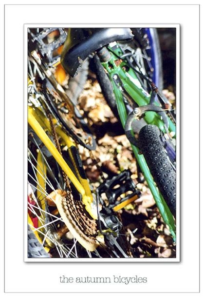"фото ""the autumn bicycles"" метки: натюрморт,"