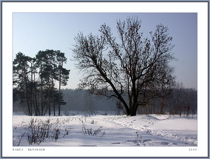 """фото """"Туманное утро-2"""" метки: пейзаж, зима, лес"""
