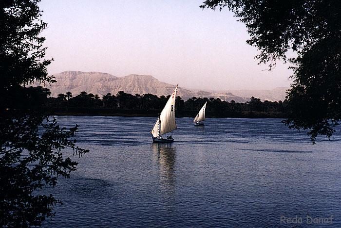 "фото ""Felukas on the Nile"" метки: путешествия, пейзаж, Африка, вода"