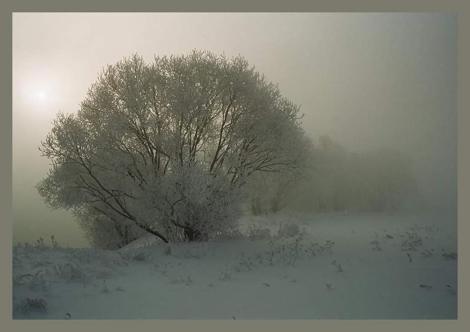 "фото ""Мартовское утро #5#"" метки: пейзаж, закат, зима"