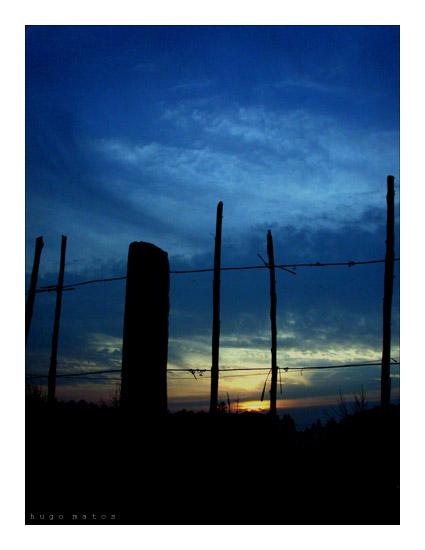 "фото ""Something in the air..."" метки: пейзаж, лес"