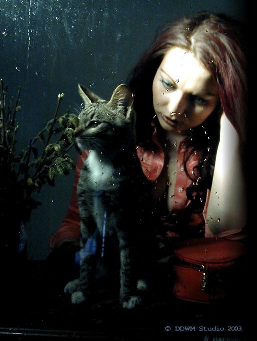 """фото """"кошка и человек"""" метки: портрет, жанр, женщина"""