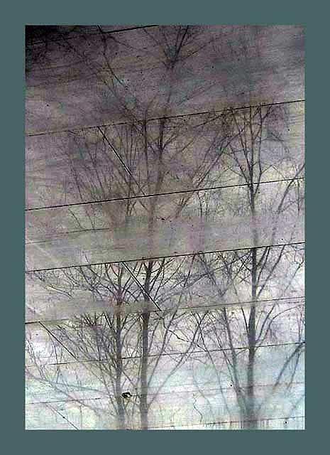 """фото """"Reflections  on marble"""" метки: абстракция,"""