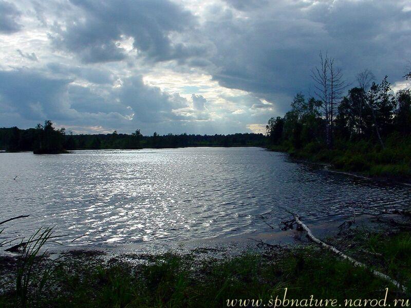 """фото """"ненастье"""" метки: пейзаж, природа, вода"""