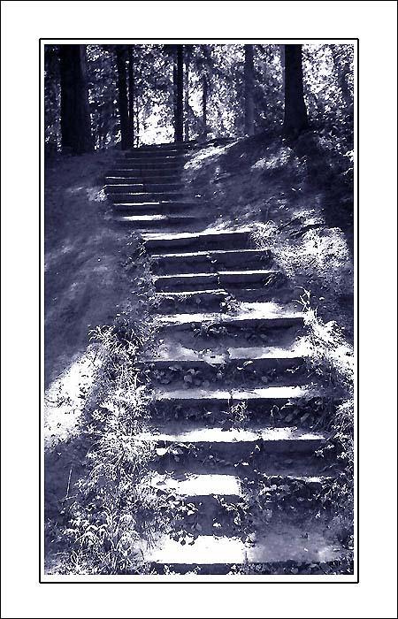 "фото ""Лестница души"" метки: жанр, черно-белые,"