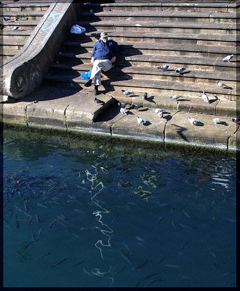 "фото ""Рыбы... птицы..."" метки: жанр, путешествия, Европа"