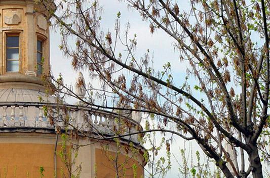 """фото """"San Antonio"""" метки: архитектура, пейзаж,"""
