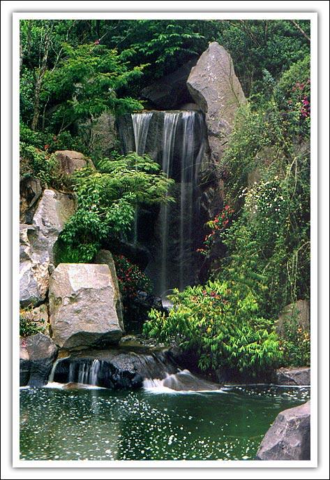 """фото """"Japanese Garden #2"""" метки: природа, цветы"""