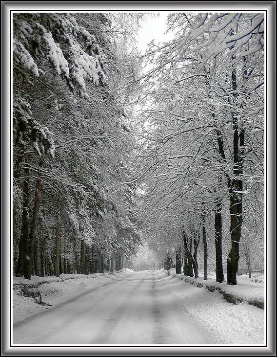 "фото ""***"" метки: пейзаж, весна, зима"