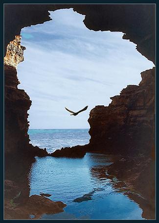 """фото """"Окно"""" метки: путешествия, Австралия"""