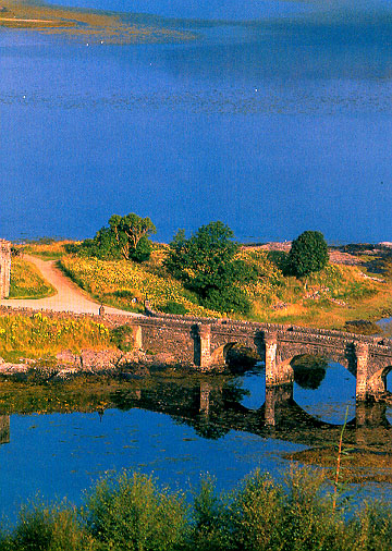 "фото ""The Bridge"" метки: пейзаж, вода"