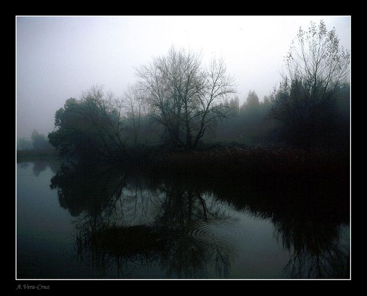 """фото """"Soft Misty Colors"""" метки: пейзаж,"""