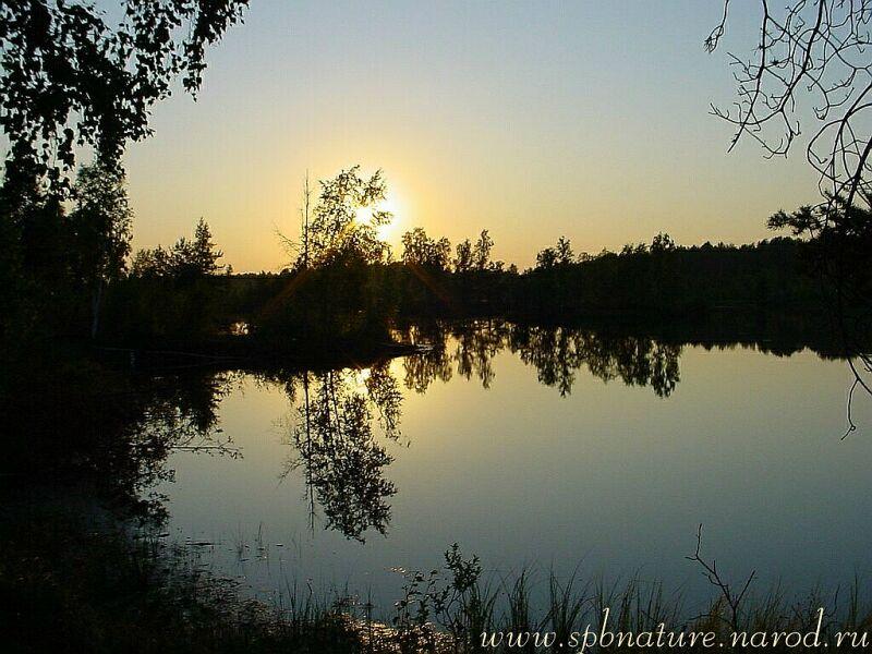 "фото ""засыпающее солнце2"" метки: пейзаж, закат, ночь"