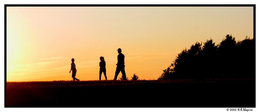 "фото ""Evening Stride"" метки: пейзаж,"