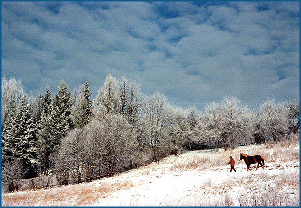 """фото """"сново снег"""" метки: пейзаж, зима"""