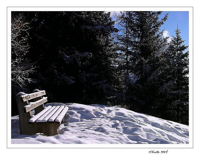 "фото ""...thoughtful..."" метки: натюрморт, пейзаж, горы"