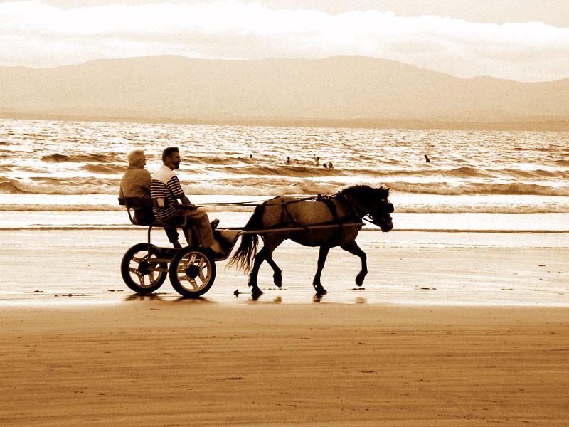 "фото ""Evening on the sands"" метки: пейзаж, вода, лето"