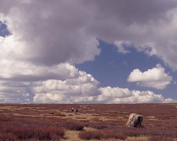 """фото """"Прогулка на подоблачном плато."""" метки: пейзаж, горы, осень"""