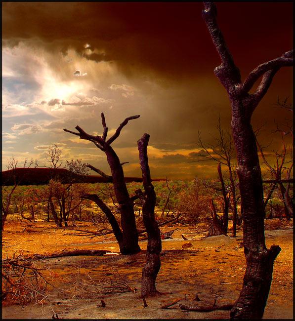 """фото """"Mesa Verde"""" метки: путешествия, Северная Америка"""