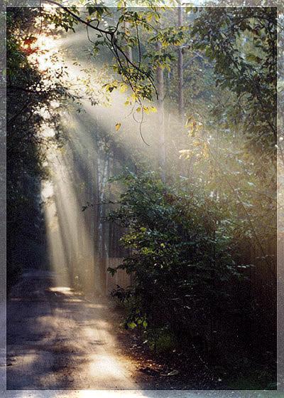 """фото """"уезжая..."""" метки: природа,"""