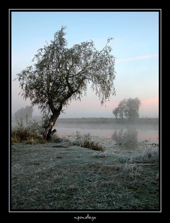 "фото ""проповедь"" метки: разное, пейзаж,"