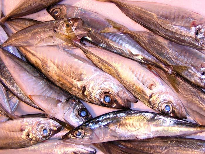 "фото ""Fish Market 1"" метки: репортаж, природа,"