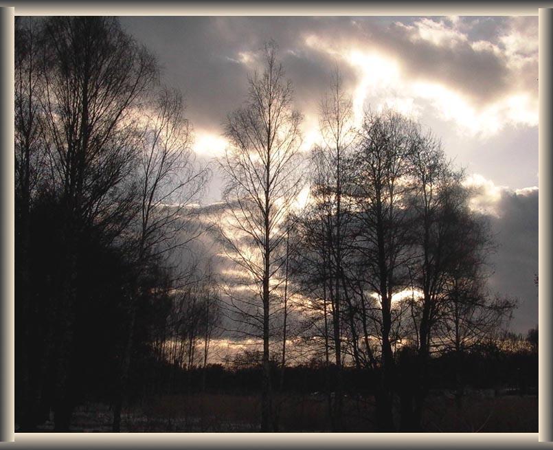 "фото ""Gentle evening"" метки: пейзаж, весна"