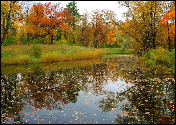 """фото """"Осенние кадры-4"""" метки: пейзаж, осень"""