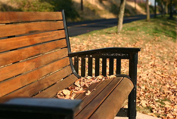 """фото """"Осень пришла"""" метки: пейзаж, осень"""