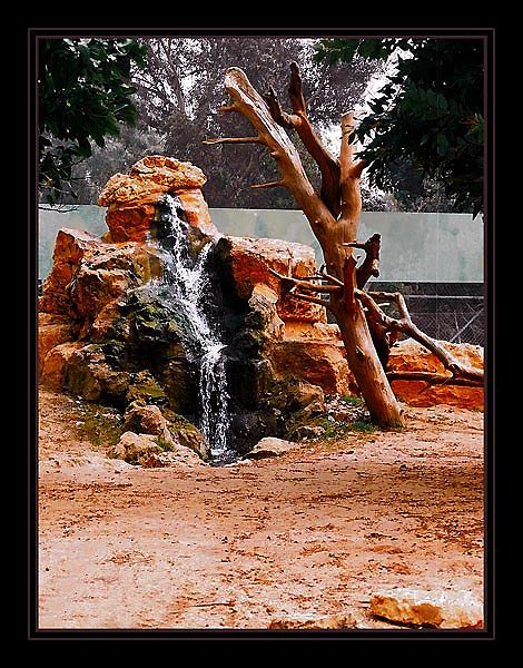 "фото ""Мертвая вода"" метки: пейзаж, вода"