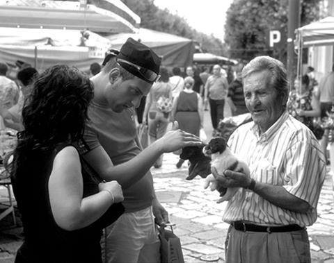 "фото ""At market"" метки: разное,"