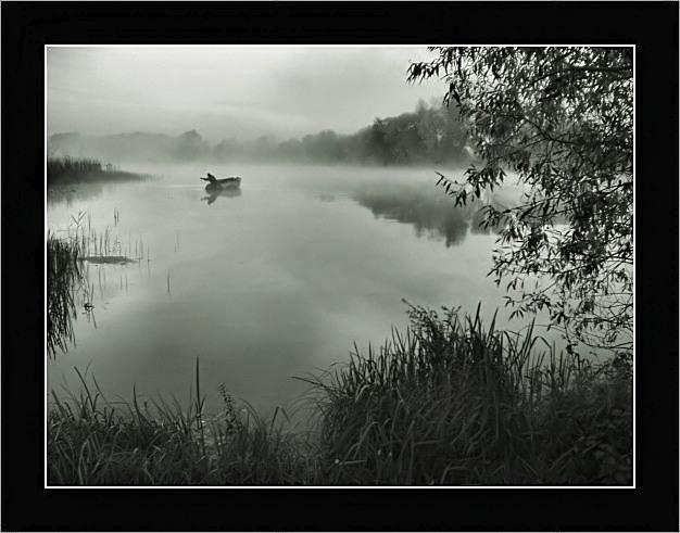 """фото """"В тумане."""" метки: пейзаж, вода, закат"""