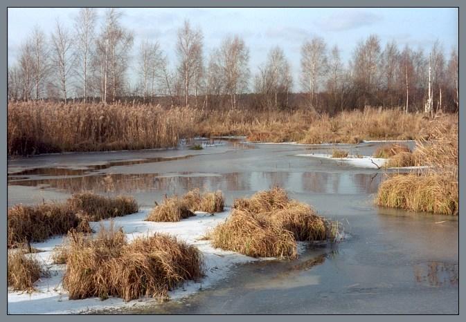 """фото """"Яузские болота / Лосиный Остров"""" метки: пейзаж, вода, осень"""