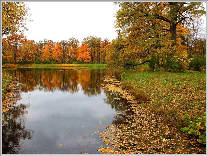 """фото """"Осенние кадры-6"""" метки: пейзаж, осень"""