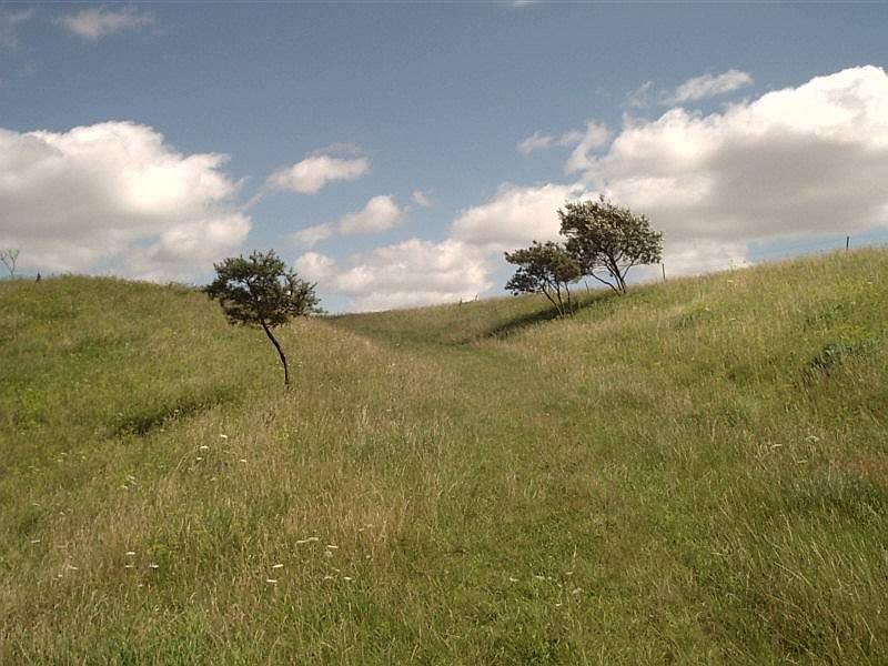 "фото ""Landscabe"" метки: природа,"