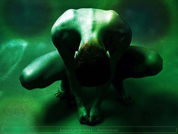 "фото ""Frog"" метки: разное,"