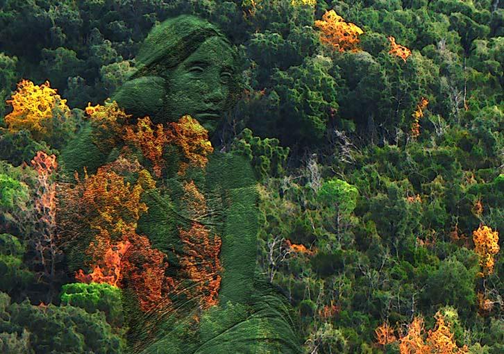 "фото ""Dama del Bosc"" метки: разное,"