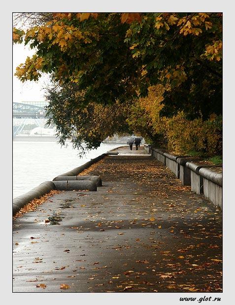 """фото """"Золотая осень"""" метки: разное,"""