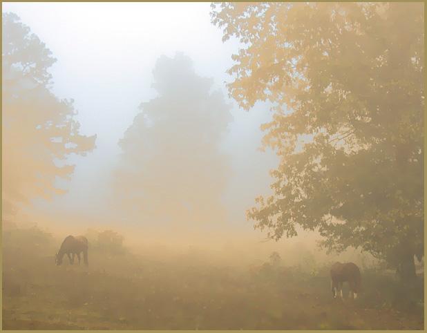 """фото """"Pastel Peace"""" метки: пейзаж, фотомонтаж,"""